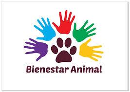 Benestar animal para un mundo mellor: conclusións da 4ª Conferencia Mundial da OIE